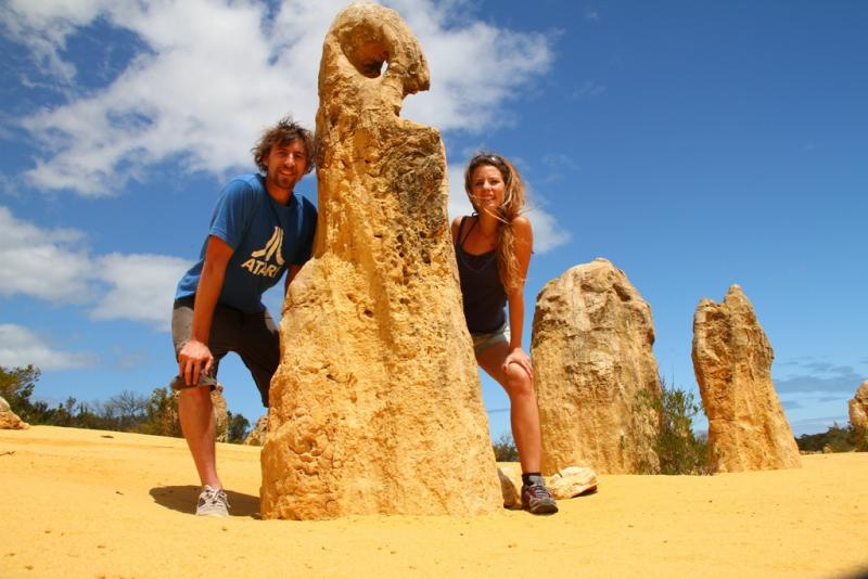 Pinnacle Tours: 1 day 4WD Pinnacles, Koalas & Sand Boarding